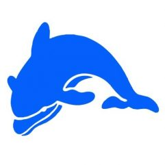 Dauphin bleu 14 x 10cm